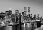 00138 Manhattan Skyline at Nigh Wall Mural