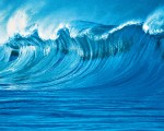 00902 The Wave