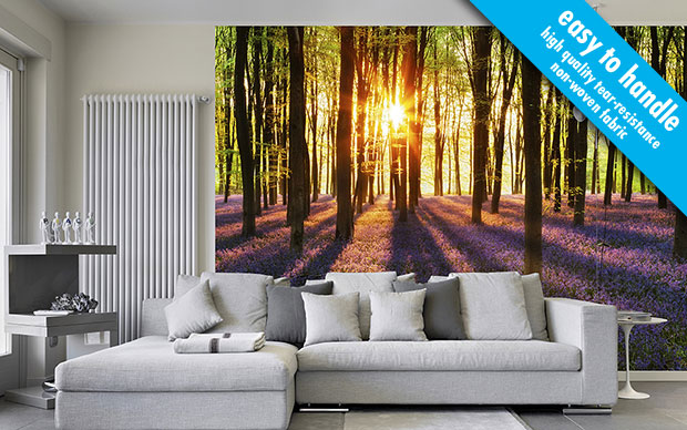 Woodland at Dawn non-woven Wall Mural