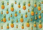 5022-4V-1 TROPICAL PINEAPPLES