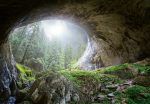 5078-4V-1 Cave in the Forest
