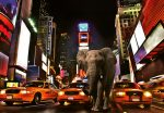 5178-4P-1 Elephant in New York